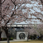 蘇州房地產市場推薦 水岸秀墅獲得高評價